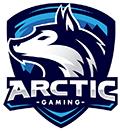 Logo Arctic Gaming