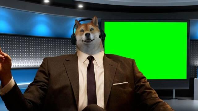 Theonemanny, el 'perro streamer' de CS:GO que triunfa en Twitch