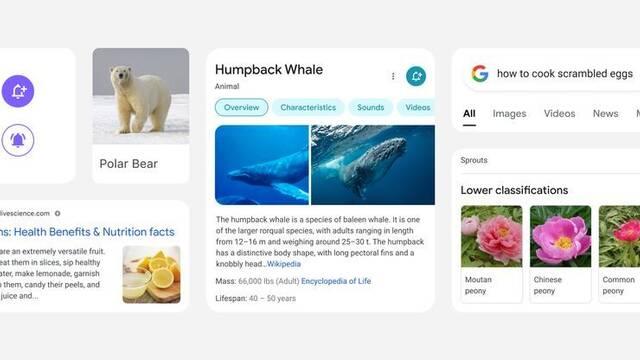 Google anuncia un cambio en el diseño de su buscador en móviles iOS y Android