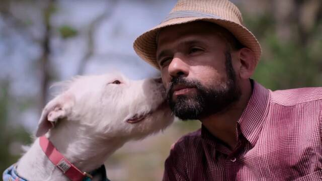 Así es Dogs, la emotiva serie documental de Netflix sobre los cánidos