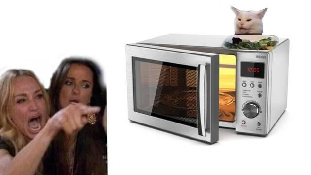 Hemos vivido en una mentira: Así es como se usa el microondas