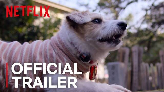 Hoy se estrena en Netflix el emotivo documental 'Dogs'