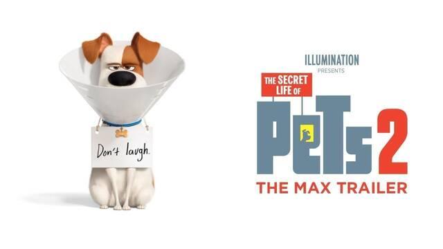 'Mascotas 2' muestra un traumático viaje al veterinario en su nuevo tráiler