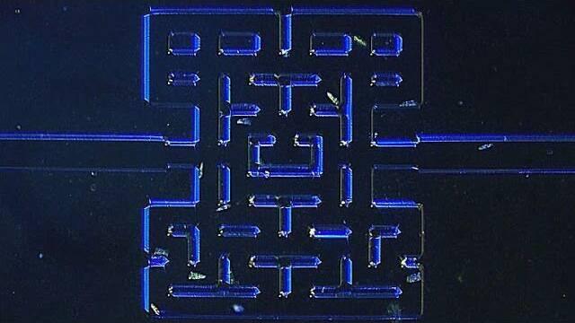 El juego de Pac-Man protagonizado por microorganismos