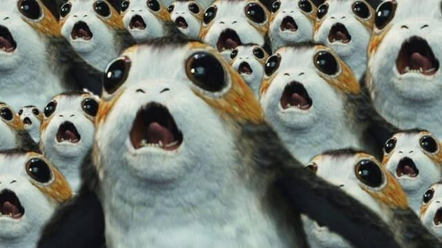 'Star Wars': PETA felicita a 'Los Últimos Jedi' con sus 'Oscats Awards'