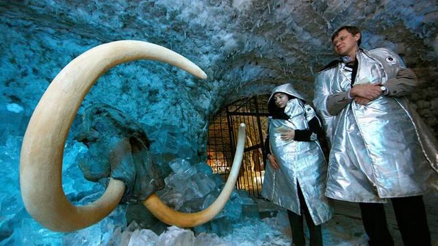 Un laboratorio ruso anuncia que está extrayendo virus de animales prehistóricos