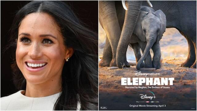 Meghan Markle pondrá voz a un nuevo documental de Disney+