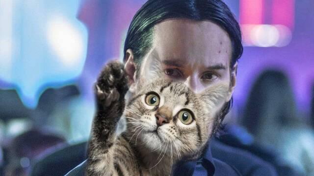 Una horda de gatos invadió el set de rodaje de 'John Wick 3'