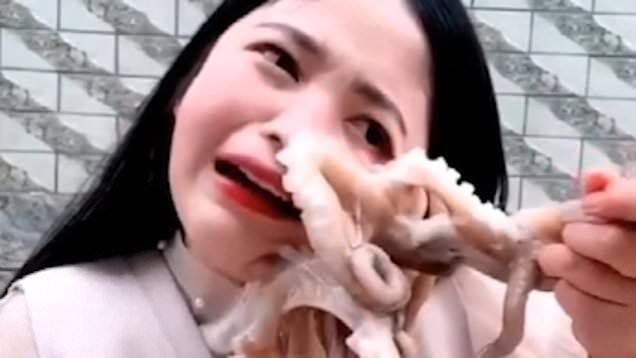 VÍDEO: Se intenta comer un pulpo vivo y le desfigura la cara