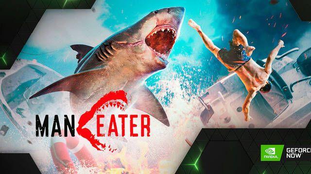 Maneater, The Long Dark y otros 24 juegos llegan esta semana a NVIDIA GeForce Now