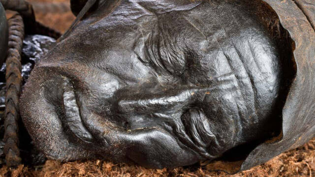 Tollund Man, la momia de la Edad del Hierro que conserva su comida sin digerir