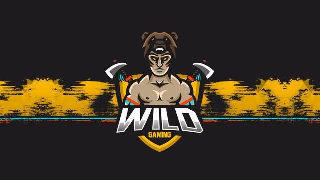 Wild Gaming se estrena con equipos de CS:GO, Clash Royale y Hearthstone