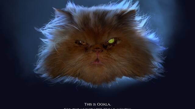 Este test de velocidad de internet esconde un huevo de pascua de un gato