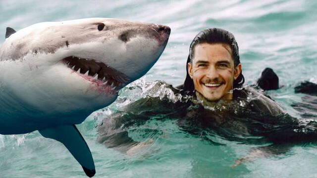 Orlando Bloom es rodeado por un tiburón blanco mientras practica paddle surf