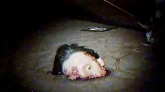 V/H/S/94: Un equipo de SWAT investiga un terrorífico culto en lo nuevo de Shudder