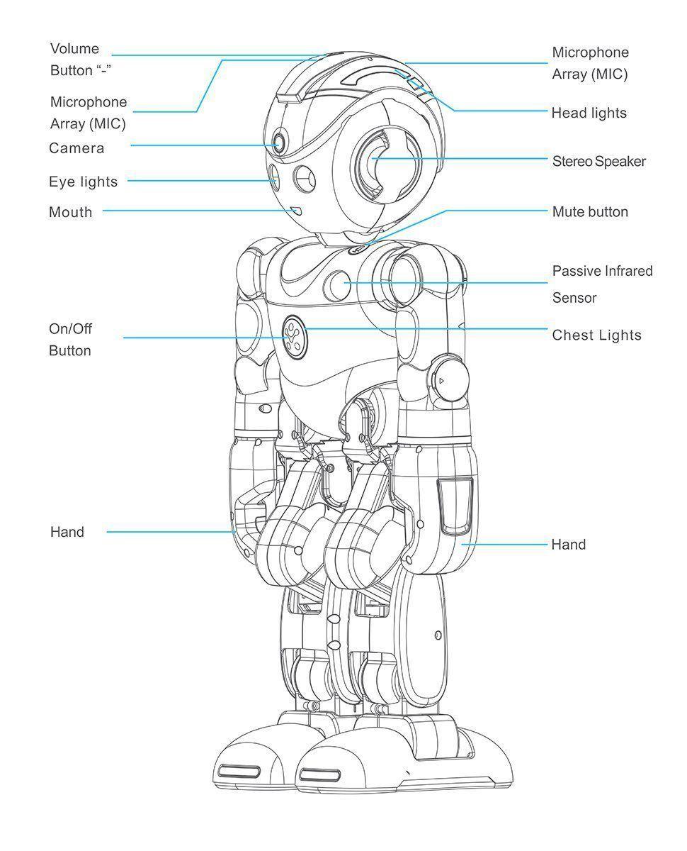 Lynx, el robot de Amazon