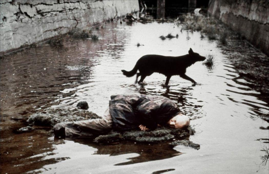 Stalker, La Zona (1979)
